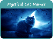 Mystical Cat Names