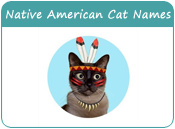 Native American Cat Names