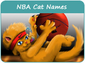 NBA Cat Names