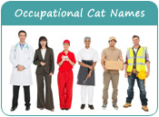 Occupational Cat Names