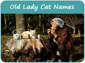Old Lady Cat Names