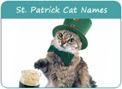Saint Patrick Day Cat Names