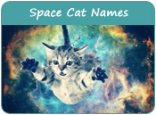 Space Cat Names