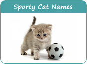 Sporty Cat Names