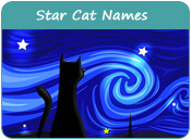Star Cat Names