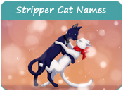 Stripper Cat Names