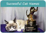 Successful Cat Names