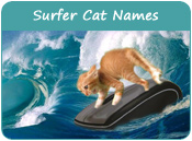 Surfer Cat Names