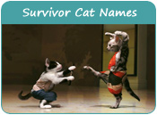 Survivor Cat Names