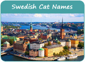 Swedish Cat Names