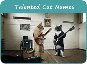 Talented Cat Names