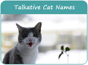 Talkative Cat Names