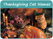 Thanksgiving Cat Names