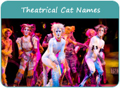 Theatrical Cat Names