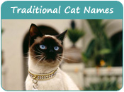 Traditional Cat Names