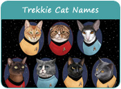 Trekkie Cat Names