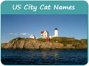 US City Cat Names