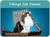 Vikings Cat Names