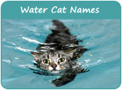 Water Cat Names