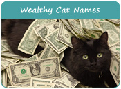 Wealthy Cat Names