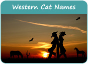 Western Cat Names
